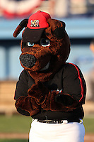 Batavia Muckdogs mascot Homer during a game against the Mahoning Valley Scrappers at Dwyer Stadium on July 5, 2011 in Batavia, New York.  Batavia defeated Mahoning Valley 2-1.  (Mike Janes/Four Seam Images)
