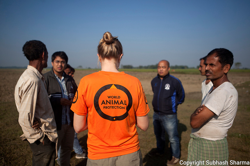 On Assignment : WORLD ANIMAL PROTECTION - as they do about Helping & Rescuing Animals caught in Flood Situations in Assam.