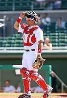 Luis Exposito - Mesa Solar Sox, 2009 Arizona Fall League.Photo by:  Bill Mitchell/Four Seam Images..