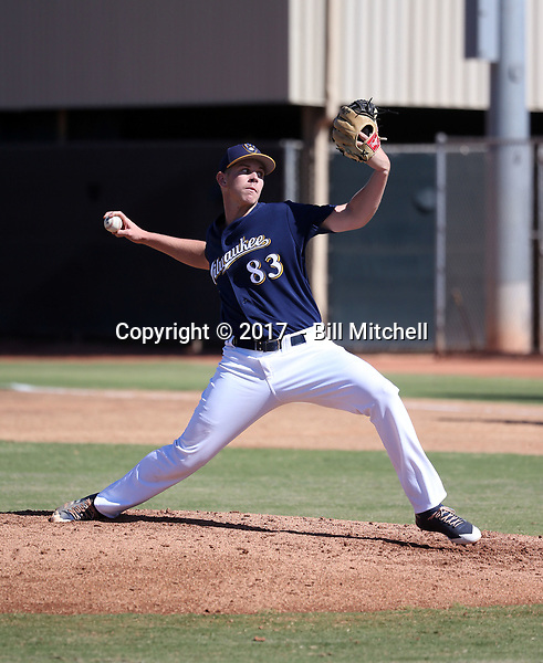 Austin Rubick - 2017 AIL Brewers (Bill Mitchell)