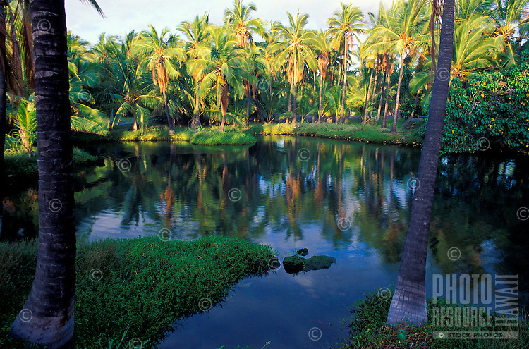 Historic fishpond at Leleiwi Beach Park, part of the Richardson Ocean Center, Keaukaha, east of Hilo