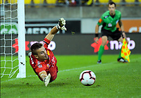 Phoenix keeper Filip Kurto dives during the A-League football match between Wellington Phoenix and West Sydney Wanderers at Westpac Stadium in Wellington, New Zealand on Sunday, 17 March 2019. Photo: Dave Lintott / lintottphoto.co.nz