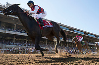 DEL MAR, CA - NOVEMBER 04: Carina Mia #1, ridden by Javier Castellano, during Breeders' Cup Filly & Mare Sprint on Day 2 of the 2017 Breeders' Cup World Championships at Del Mar Thoroughbred Club on November 4, 2017 in Del Mar, California. (Photo by Alex Evers/Eclipse Sportswire/Breeders Cup)