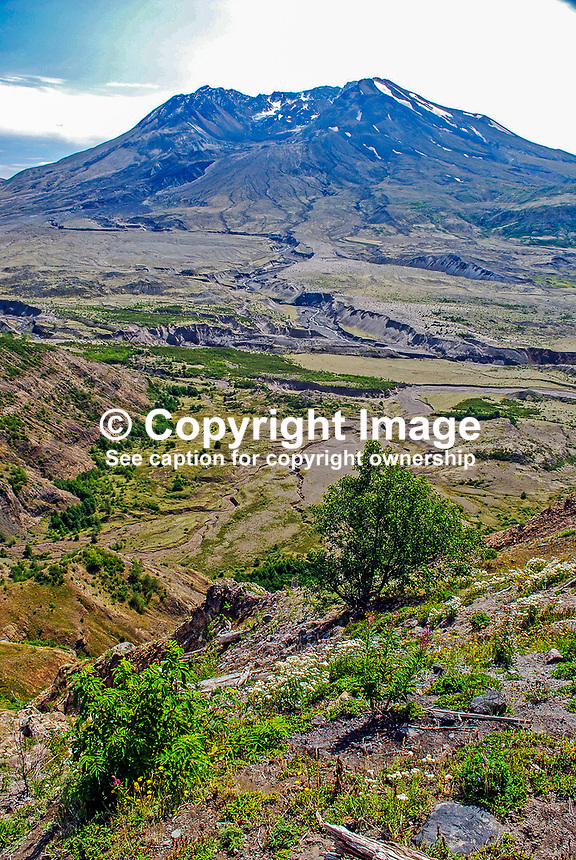 Mount St Helens, Washington State, USA, which last erupted in May, 1980. 200809020895, volcano, lava..Copyright Image from Victor Patterson, 54 Dorchester Park, Belfast, N Ireland, BT9 6RJ...Tel: +44 28 9066 1296.Mob: +44 7802 353836.Email: victorpatterson@mac.com..IMPORTANT: Please go to www.victorpatterson.com and click on my Terms and Conditions of use.