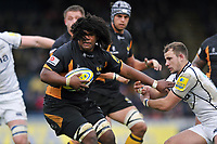London Wasps v Sale Sharks