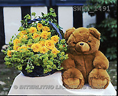 Carl, CUTE ANIMALS, teddies, flowers, photos, yellow roses, teddy(SWLA1491,#AC#)