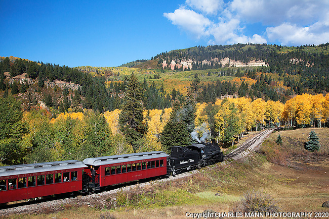 Visitors from all over the country and from overseas come to see and ride the Cumbres & Toltec Narrow Gauge Steam Railroad in Chama, New Mexico. Engine 489 hauls the train through an aspen glade n a mid September run up the mountain.