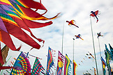 USA, Washington State, Long Beach Peninsula, stationary kites fly at the International Kite Festival