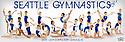 2014 - 2015 SGA Gymnastics