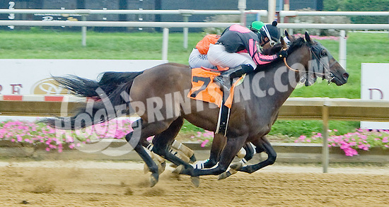 Debit Card with Alex Cintron aboard won by a nose at Delaware Park on 8/22/12