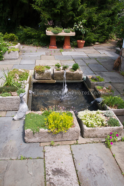 Trough Rock Gardens With Succulent Plants Around Water Fountain Feature On  Stone Patio, Ornamental Duck