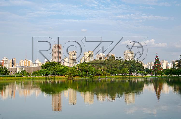 Árvore de natal do Parque do Ibirapuera, São Paulo - SP, 12/2012
