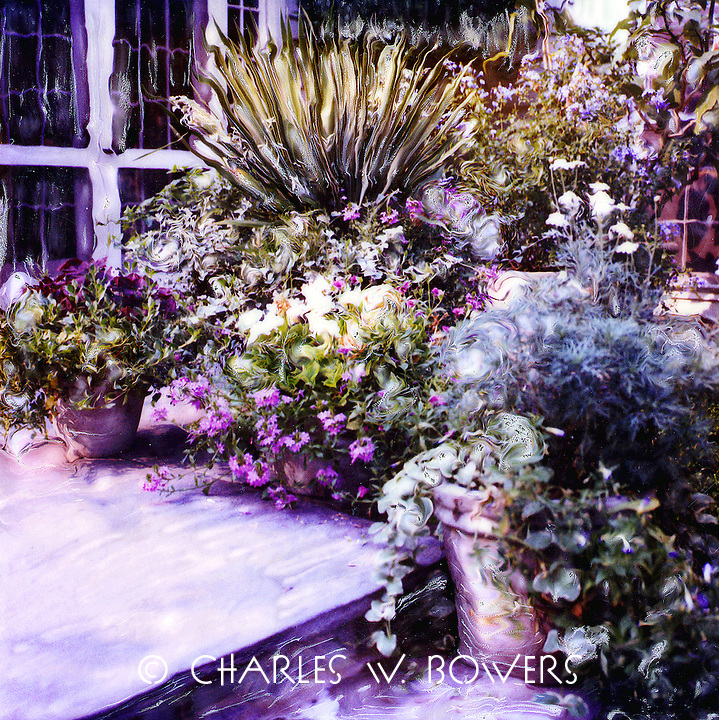 Wow - look at all those pots full of plants and flowers. It's a wonderful view from inside the home or when relaxing on the flagstone patio. Come join me.<br /> <br /> -Limited Edition of 50 Prints