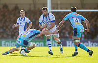 Castres Loic Jacquet in action during todays match<br /> <br /> Photographer Bob Bradford/CameraSport<br /> <br /> European Rugby Heineken Champions Cup Pool 2 - Exeter Chiefs v Castres - Sunday 13th January 2019 - Sandy Park - Exeter<br /> <br /> World Copyright &copy; 2019 CameraSport. All rights reserved. 43 Linden Ave. Countesthorpe. Leicester. England. LE8 5PG - Tel: +44 (0) 116 277 4147 - admin@camerasport.com - www.camerasport.com