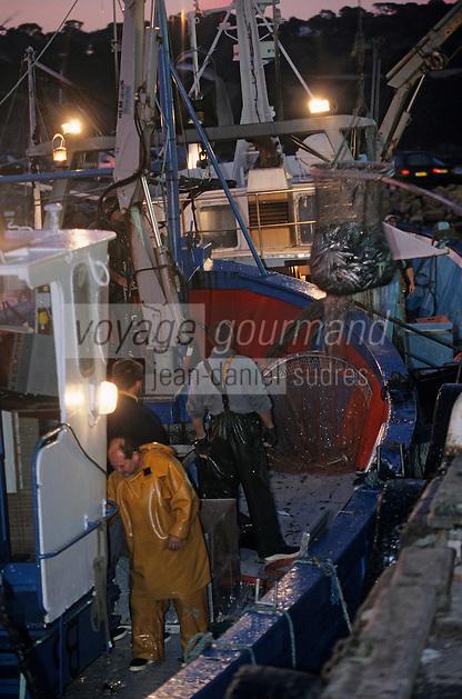 Europe/France/Bretagne/29/Finistère/Douarnenez: Déchagement des bateaux au retour de la pêche à la sardine sur le port