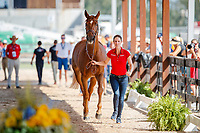 GER-Simone Blum presents DSP Alice during the 2nd Horse Inspection for the FEI World Individual Jumping Championships. 2018 FEI World Equestrian Games Tryon. Saturday 22 September. Copyright Photo: Libby Law Photography