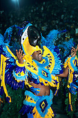 Rio de Janeiro, Brazil. Carnival; man in blue and yellow feather macaw costume.
