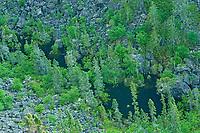 Bottom of Ouimet Canyon , Ouimet Canyon Provincial Park, Ontario, Canada