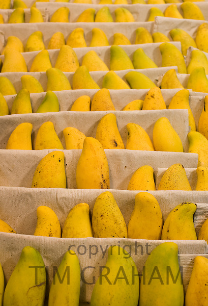 Fresh mango fruits on display in supermarket, Chongqing, China