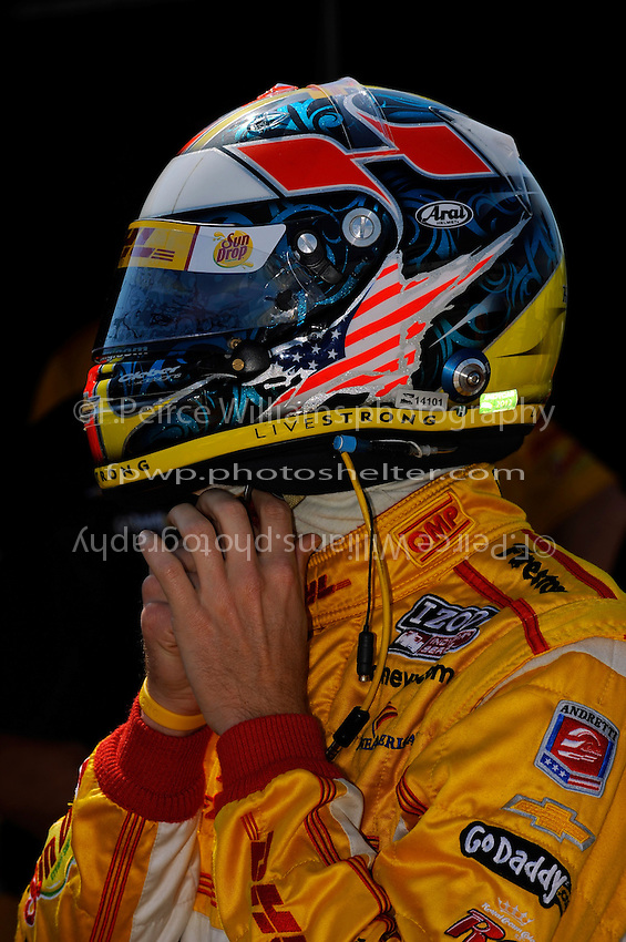 Ryan Hunter-Reay (#28)