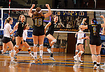 BROOKINGS, SD - NOVEMBER 9:  Tiara Gibson #7 from South Dakota State University celebrates a point to tie Western Illinois in the fifth game of their match Saturday at Frost Arena. The Jacks won 3-2. (Photo by Dave Eggen/Inertia)