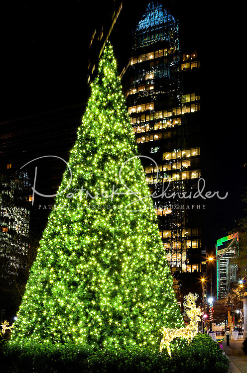 Reindeer and a white-light covered tree welcomes in the winter holiday season in downtown / uptown / center city Charlotte. Photo taken as part of a series of images that capture holiday decorations and festivities in and around Charlotte by Charlotte photographer Patrick Schneider.