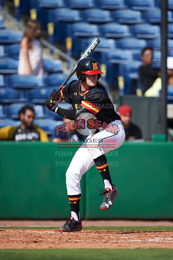 Maryland Terrapins center fielder Zach Jancarski (3) at bat during a game against the Alabama State Hornets on February 19, 2017 at Spectrum Field in Clearwater, Florida.  Maryland defeated Alabama State 9-7.  (Mike Janes/Four Seam Images)