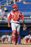 Williamsport Crosscutters catcher Deivi Grullon (29) during a game against the Batavia Muckdogs on July 27, 2014 at Dwyer Stadium in Batavia, New York.  Batavia defeated Williamsport 6-5.  (Mike Janes/Four Seam Images)