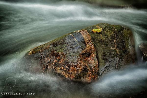 Rock in the Rio Seco River, north Trinidad.