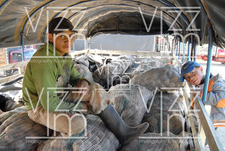 BOYACA -COLOMBIA- 21-10--2013.   Luis Emilio Betancur Ruiz, del Barrio  Ciudad Jardin de Tunja, trajo al centro de acopio, 23 bultos de papa, que el solo cultivo. Su padre le ense–o a ser agricultor desde peque–o y con la ganancia de esta parcela se paga sus estudios en un  colegio de Tunja, y aspira cuando sea mayor de edad, estudiar Agronomia en la Universidad Pœblica UPTC. .  Dignidad papera y agropecuaria', movimiento que lidero el paro agrario nacional en dias pasados, logro que el Gobierno comprara toda la papa de la produccion boyacense, para ubicarla en la poblacion mas vulnerable del pais, especialmente la que esta afectada por algun riesgo climatico, como en las zonas de Choco, San Andres, Magangue, Sincelejo y Florencia.  /  Betancur Luis Emilio Ruiz del Barrio Tunja Garden City, brought to the collection center, 23 lumps of potato, the only cultivated. His father taught him to be a farmer since childhood and this plot gain paid their studies at a school in Tunja, and sucks when it comes of age, studying agronomy at the Public University UPTC. Mumps and agricultural Dignity ', a movement that led the national agricultural strike in recent days, the government managed to buy all the potato production Boyaca, to place it in the country's most vulnerable population, particularly those who are affected by a climate risk and in areas of Choco, San Andres, Magangue, Sincelejo and Florence. .Photo: VizzorImage / Jose Miguel Palencia  / Stringer