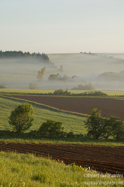 Early morning mist hangs over the valley of French River in Prince Edward Island, Canada. In the foreground, newly planted potato fields in the red soil that the island is famous for.