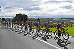 The peleton with Team Katusha Alpecin on the front in action during Stage 6 of the 53rd edition of the Tirreno-Adriatico 2018 running 153km from Numana to Fano, Italy. 12th March 2018.<br /> Picture: LaPresse/Fabio Ferrari | Cyclefile<br /> <br /> <br /> All photos usage must carry mandatory copyright credit (&copy; Cyclefile | LaPresse/Fabio Ferrari)