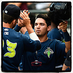 First baseman Jeremy Vasquez (20) of the Columbia Fireflies is congratulated after scoring a run in the third inning of a game against the Greenville Drive on Saturday, May 26, 2018, at Spirit Communications Park in Columbia, South Carolina. Columbia won, 9-2. (Tom Priddy/Four Seam Im