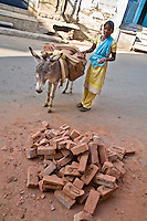 Young woman moving bricks with donkey.<br /> (Photo by Matt Considine - Images of Asia Collection)