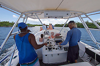 Grand Cayman. Boat excursion. Mangroves.