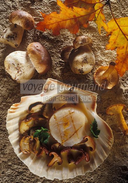 Gastronomie générale / Cuisine générale : Coquille Saint-Jacques aux champignons