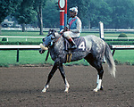 Horse racing; racehorse; Thoroughbred; racetrack, Alias Smith, Angel Cordero, Jr., Saratoga Race Course