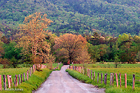 Sparks Lane in early spring<br /> Cades Cove<br /> Great Smoky Mountains N.P. TN