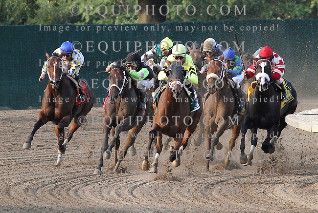 Quiet Giant #5 (C) with Julien Leparoux riding, leads the field around the final turn enroute to victory in  the $250,000 Hill 'N' Dale Molly Pitcher at Monmouth Park in Oceanport, N.J. on Saturday September 3, 2011.  Photo By Ryan Denver/EQUI-PHOTO.