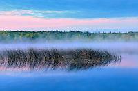 Lawrence Lake at dawn<br /> Hondo<br /> Alberta<br /> Canada