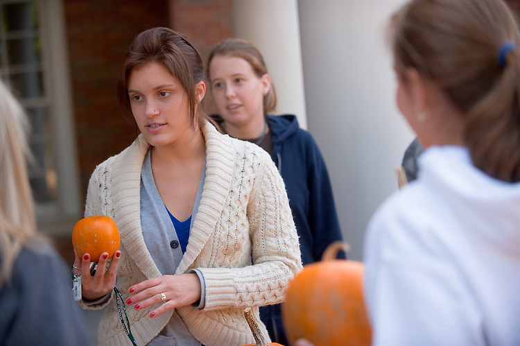 19074Students on Campus Fall..Left to right:...Natalie Mercuri(white sweater), Kacey Bruce, and Any Phillips talk to Bri Januszyk and Brittany Thomas..Selling pumpkins to raise money for Multimedia Association
