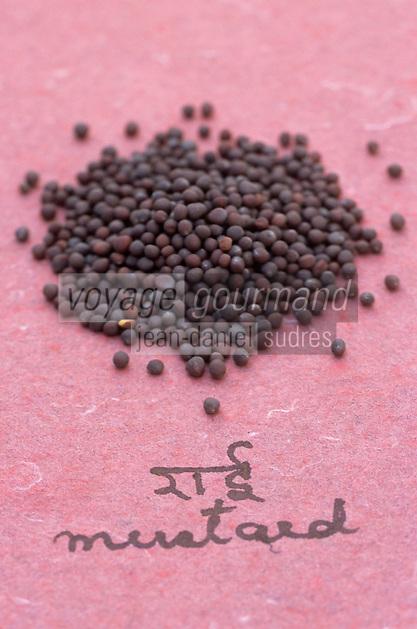 Asie/Inde/Maharashtra/Bombay : Les épices dans la cuisine indienne - Graines de moutarde