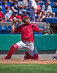 9 March 2014: St. Louis Cardinals catcher Tony Cruz in action during a Spring Training game against the Washington Nationals at Space Coast Stadium in Viera, Florida. The Nationals defeated the Cardinals 11-1 in Grapefruit League play. Mandatory Credit: Ed Wolfstein Photo *** RAW (NEF) Image File Available ***