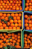 Afrique/Afrique du Nord/Tunisie/Hammamet : Oranges sur l'étal d'un primeur