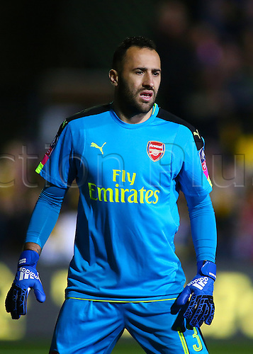 February 20th 2017, The Borough Sports Ground, Sutton, Surrey, England; FA Cup 5th Round football, Sutton United versus Arsenal FC; Arsenal Goalkeeper David Ospina prepares for a goal kick