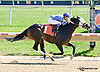 Picko's Pride winning at Delaware Park on 9/27/14