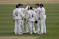 Peter Siddle of Essex celebrates with his team mates after taking the wicket of Liam Plunkett during Surrey CCC vs Essex CCC, Specsavers County Championship Division 1 Cricket at the Kia Oval on 12th April 2019
