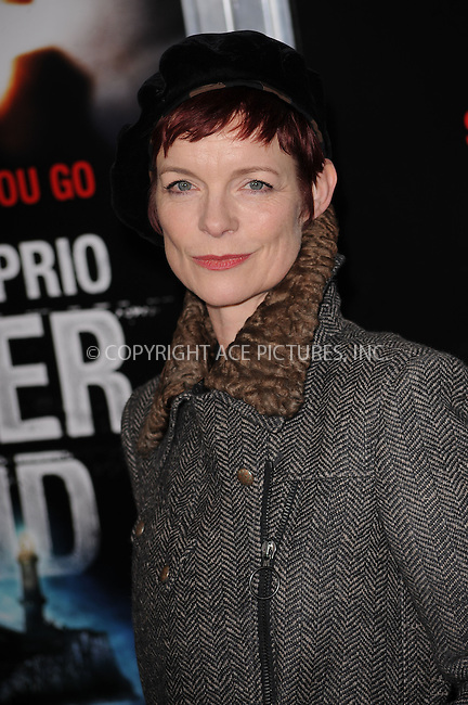 WWW.ACEPIXS.COM . . . . . ....February 17 2010, New York City....Costume designer Sandy Powell arriving at the New York premiere of 'Shutter Island' at the Ziegfeld Theatre of February 17 2010 in New York City......Please byline: KRISTIN CALLAHAN - ACEPIXS.COM.. . . . . . ..Ace Pictures, Inc:  ..(212) 243-8787 or (646) 679 0430..e-mail: picturedesk@acepixs.com..web: http://www.acepixs.com