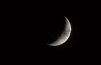 PHASES OF THE MOON<br />