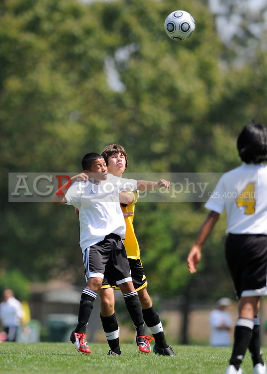 U14 BUSC Premier Vs HSC Manchester during the BUSC Summer Classic in Pleasanton, California August 16, 2009. (Photo by Alan Greth)
